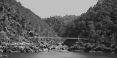 Cataract gorge thumb thumb bw2