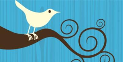 Twitter thumb2